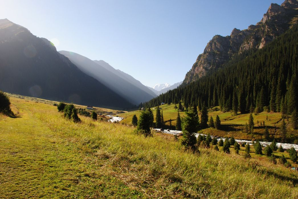 forest river altyn arashan nature Karakol Mountain wallpaper