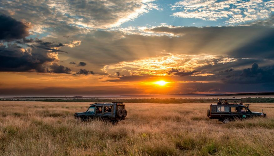 horizon sky safari africa sunset wallpaper