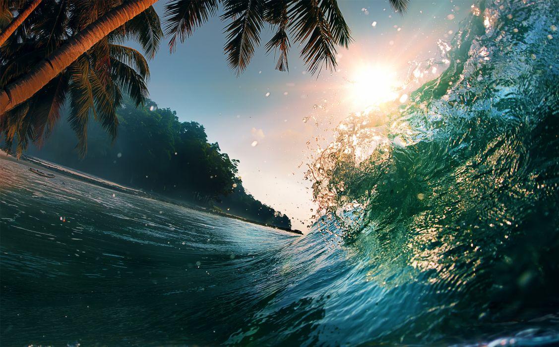 waves sea ocean beach palm trees summer wallpaper