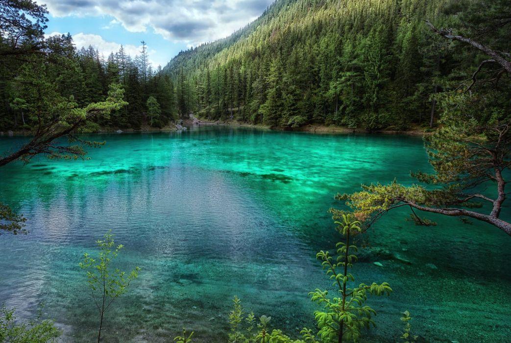 Austria Lake Forest Nature wallpaper