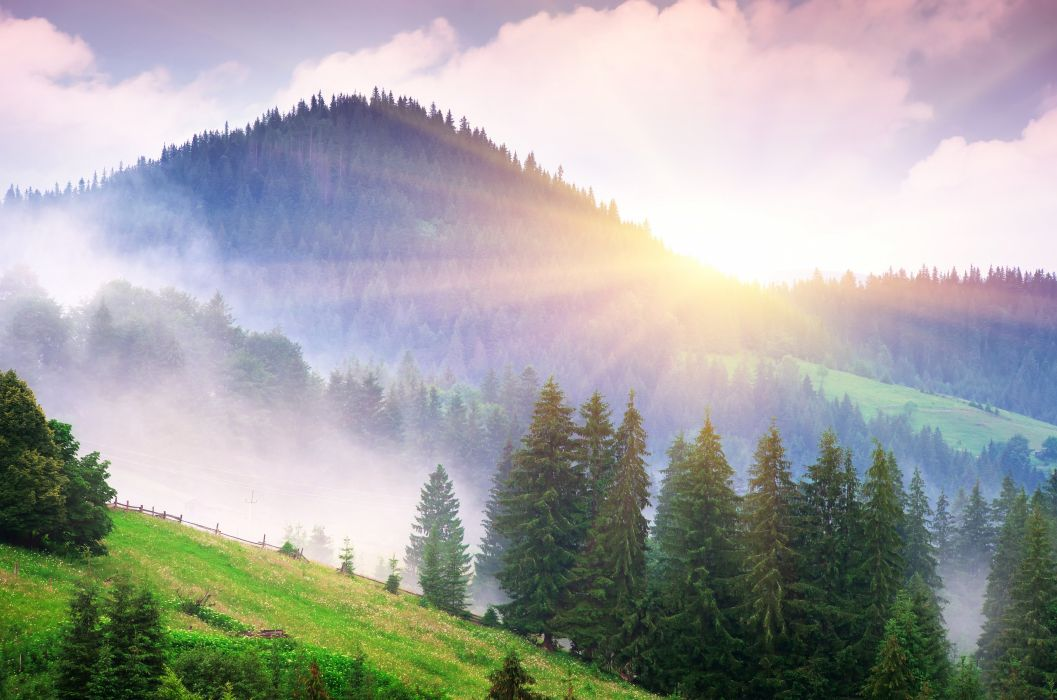 Scenery Mountains Sunrises and sunsets Trees Nature fog mist wallpaper