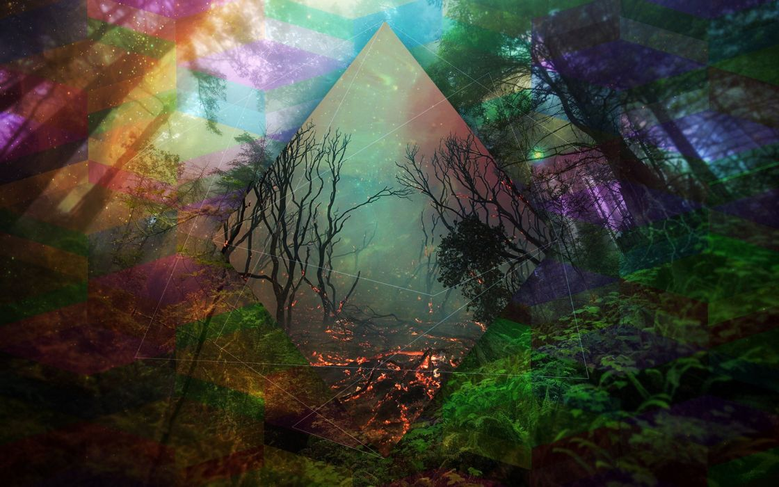 abstraction line color forest trees fantasy fire flames dark mood artwork art photoshop psychedelic wallpaper