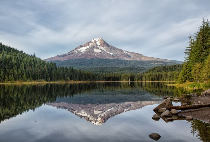 forest reflection fir lake mountain volcano wallpaper