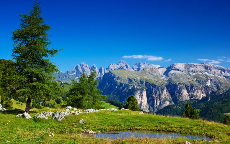 Nature sky mountains distance tree wallpaper