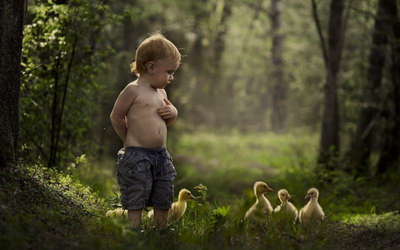 mood malchik summer duck baby bird child children cute wallpaper