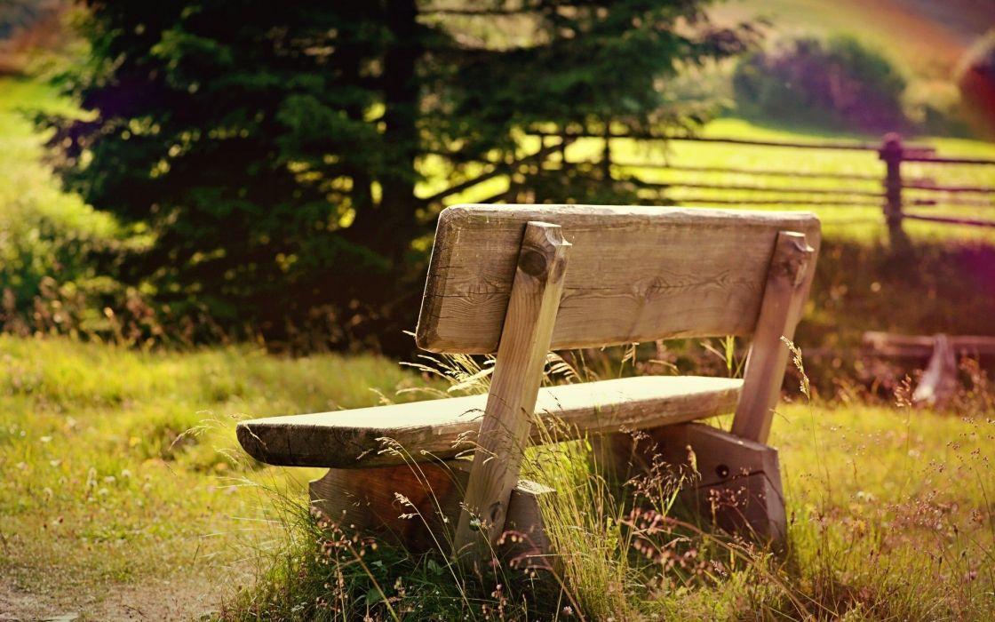 mood nature bench wallpaper