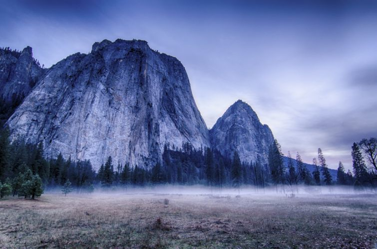 USA Yosemite trees mountains fog nature landscape wallpaper