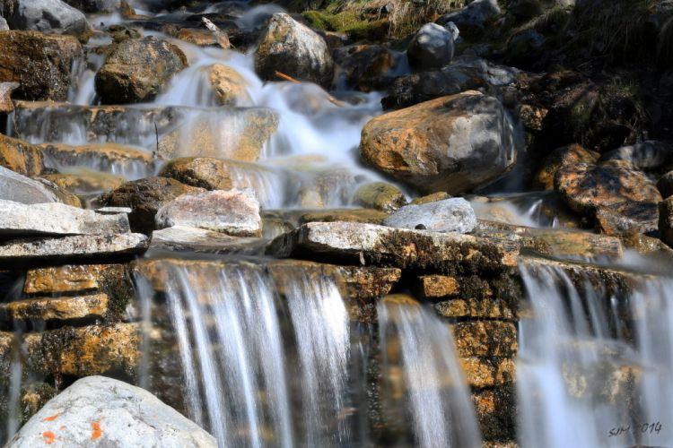 forest jungle river rocks Stones waterfalls canada wallpaper