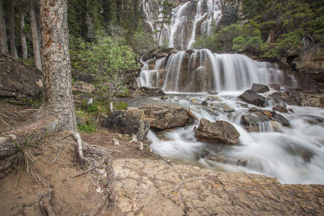 forest jungle river rocks Stones waterfalls canada wallpaper