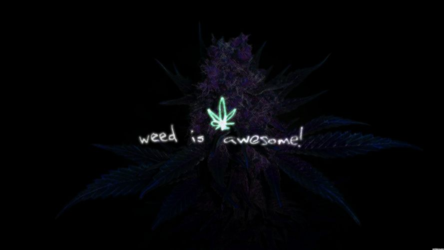 Weed is Awesome wallpaper