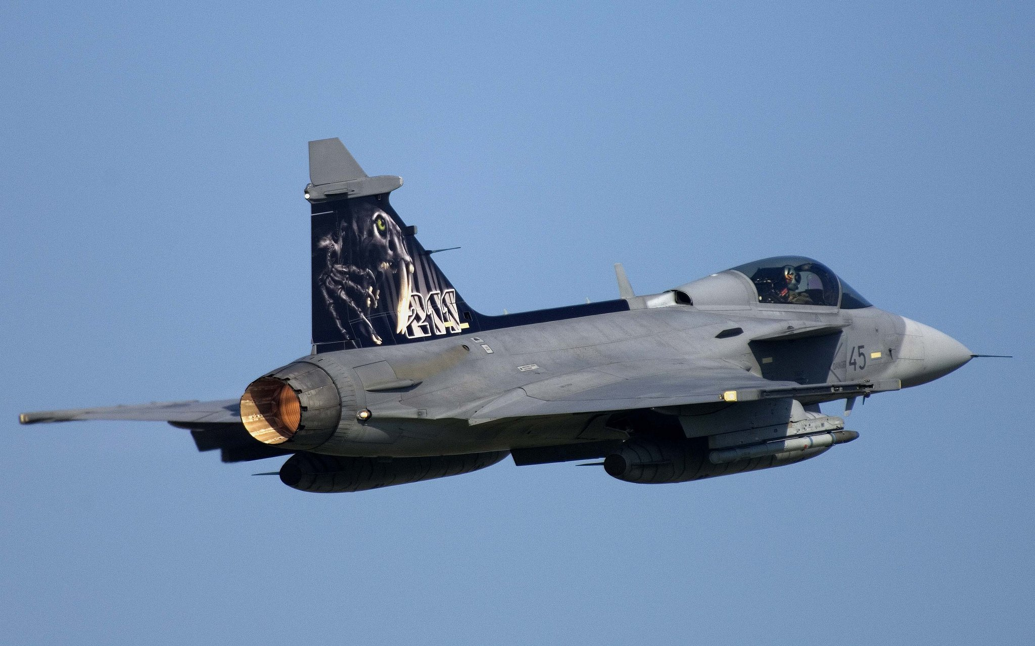 The F14 Tomcat Fighter Jet  YouTube