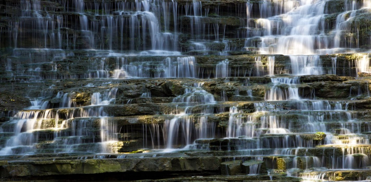 Canada forest jungle river rocks Stones waterfalls wallpaper