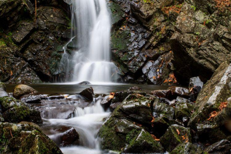 Canada forest jungle river rocks Stones waterfalls wallpaper