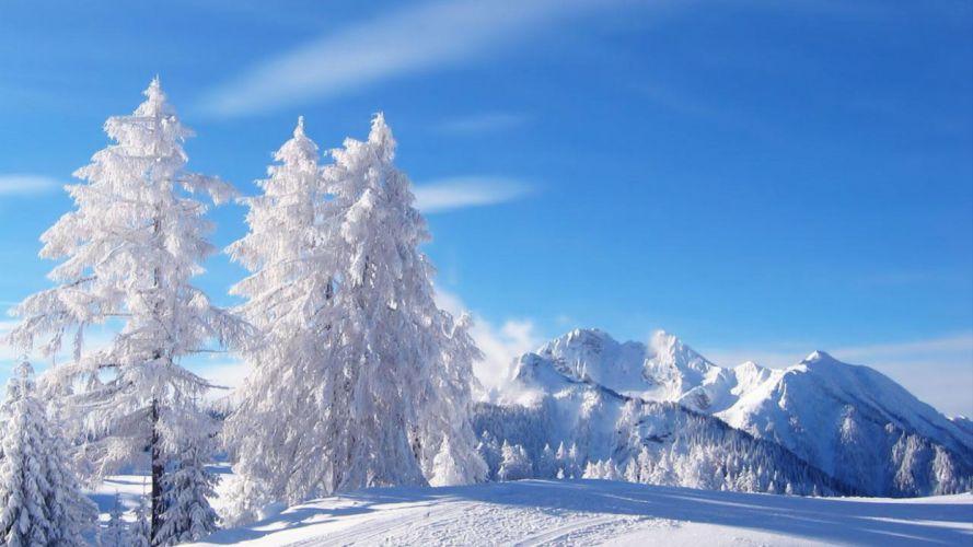 snow nature winter trees mountain white idilic wallpaper
