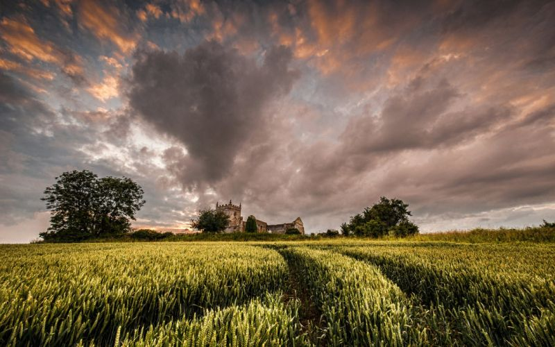 filed vollage nature sky green clouds wallpaper
