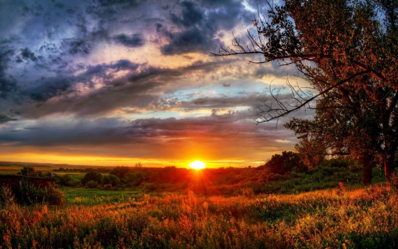 sunset nature cluds sky filed wallpaper