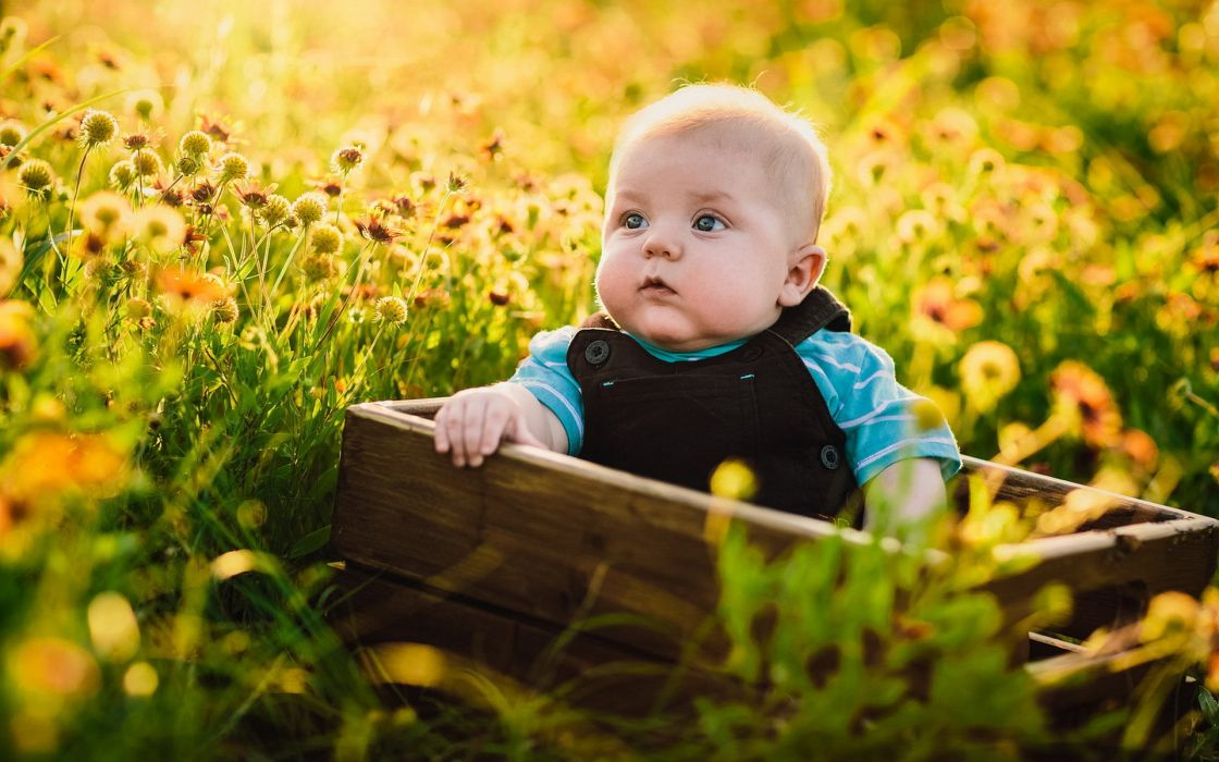 baby smile alne flowers nature wallpaper