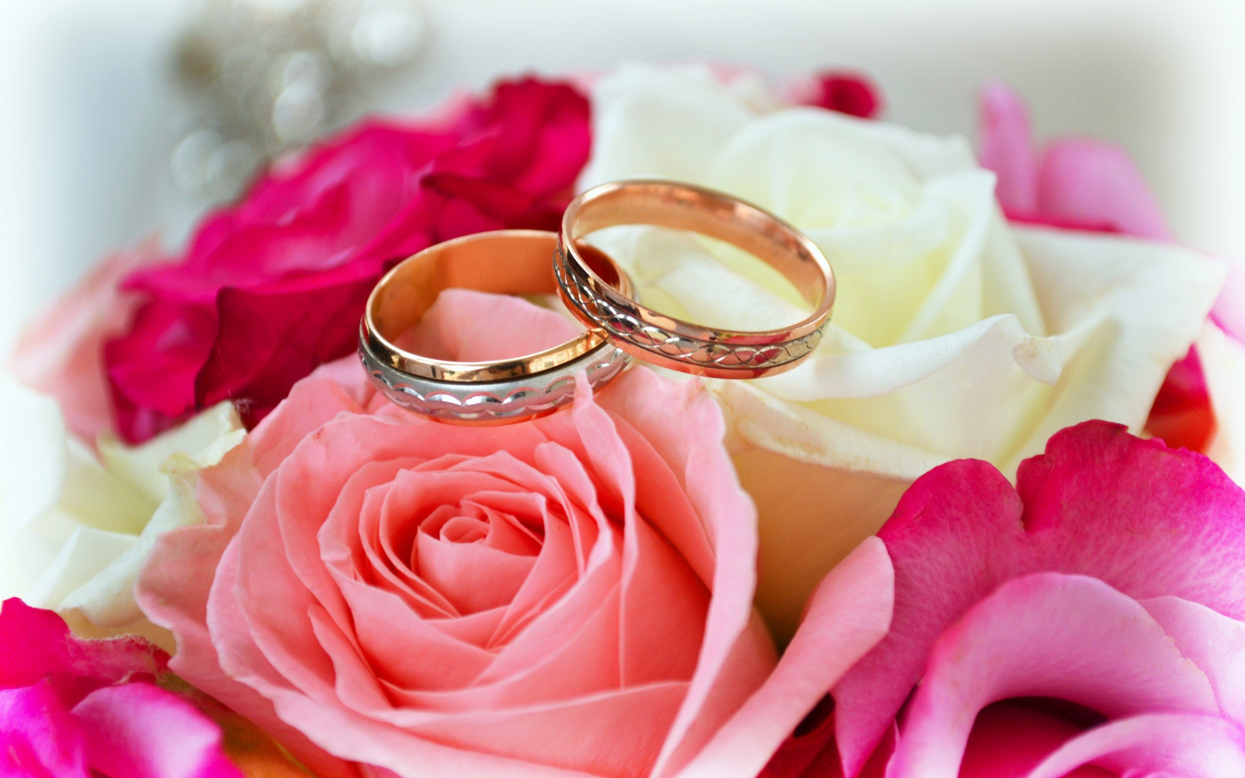Wedding rings and bible background - Clamart