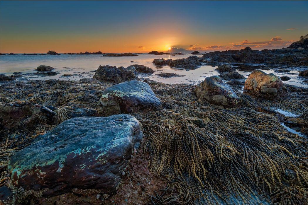 Australia sunset landscape beach sea ocean wallpaper