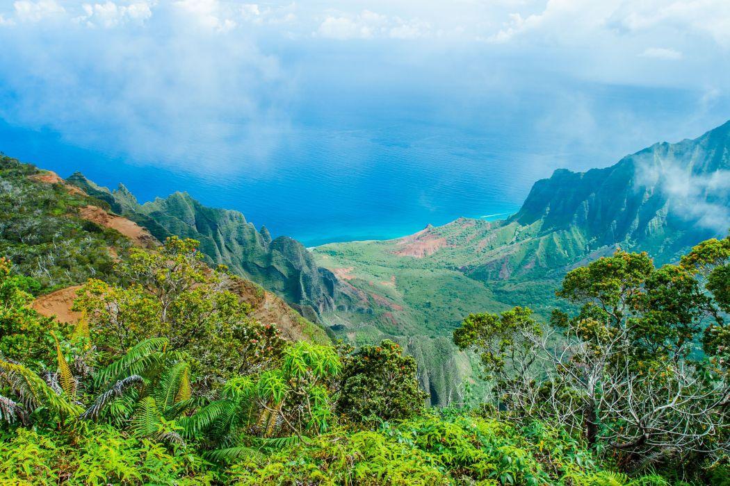 Kalalau Lookout Kauai Hawaii tropical jungle forest sea ocean wallpaper