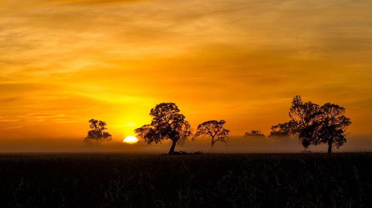 orange silhouette fog mist sunrise penola wallpaper