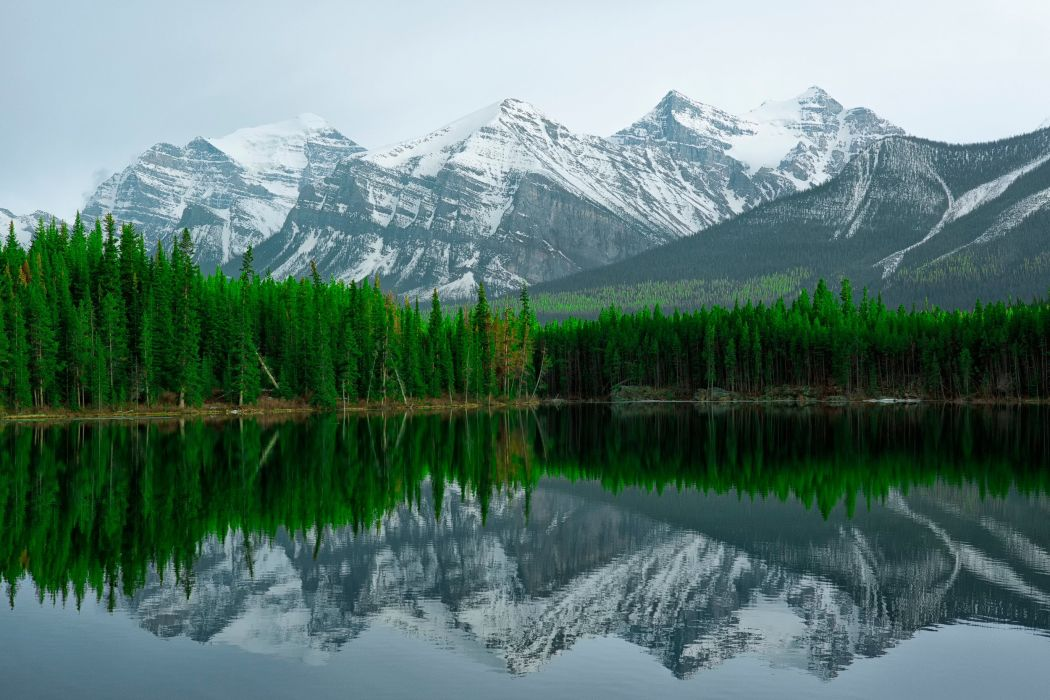 reflection lake banff herbert lake mountains wallpaper