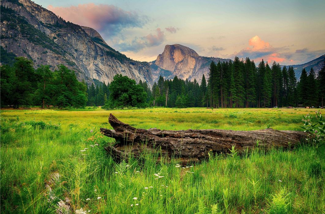 Mountains Trees Landscape Wallpaper