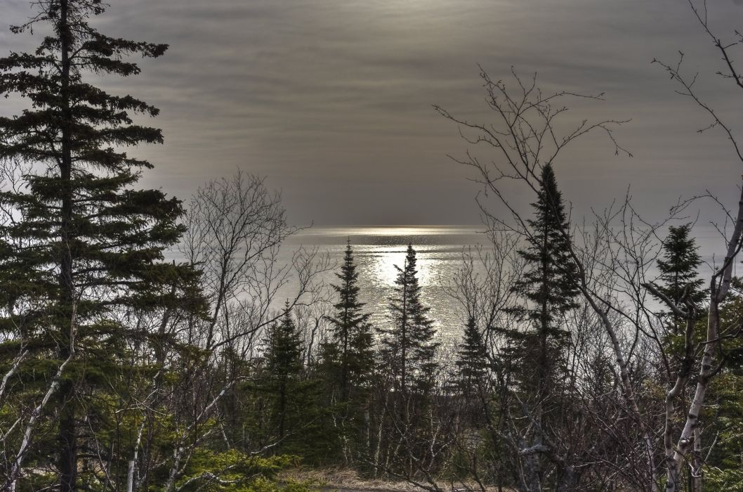 sunset lake trees landscape reflection wallpaper