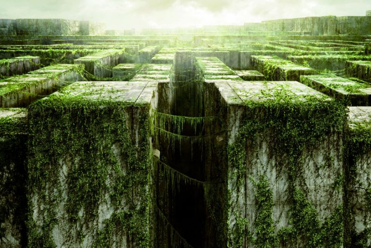 THE MAZE RUNNER action mystery thriller sci-fi wallpaper