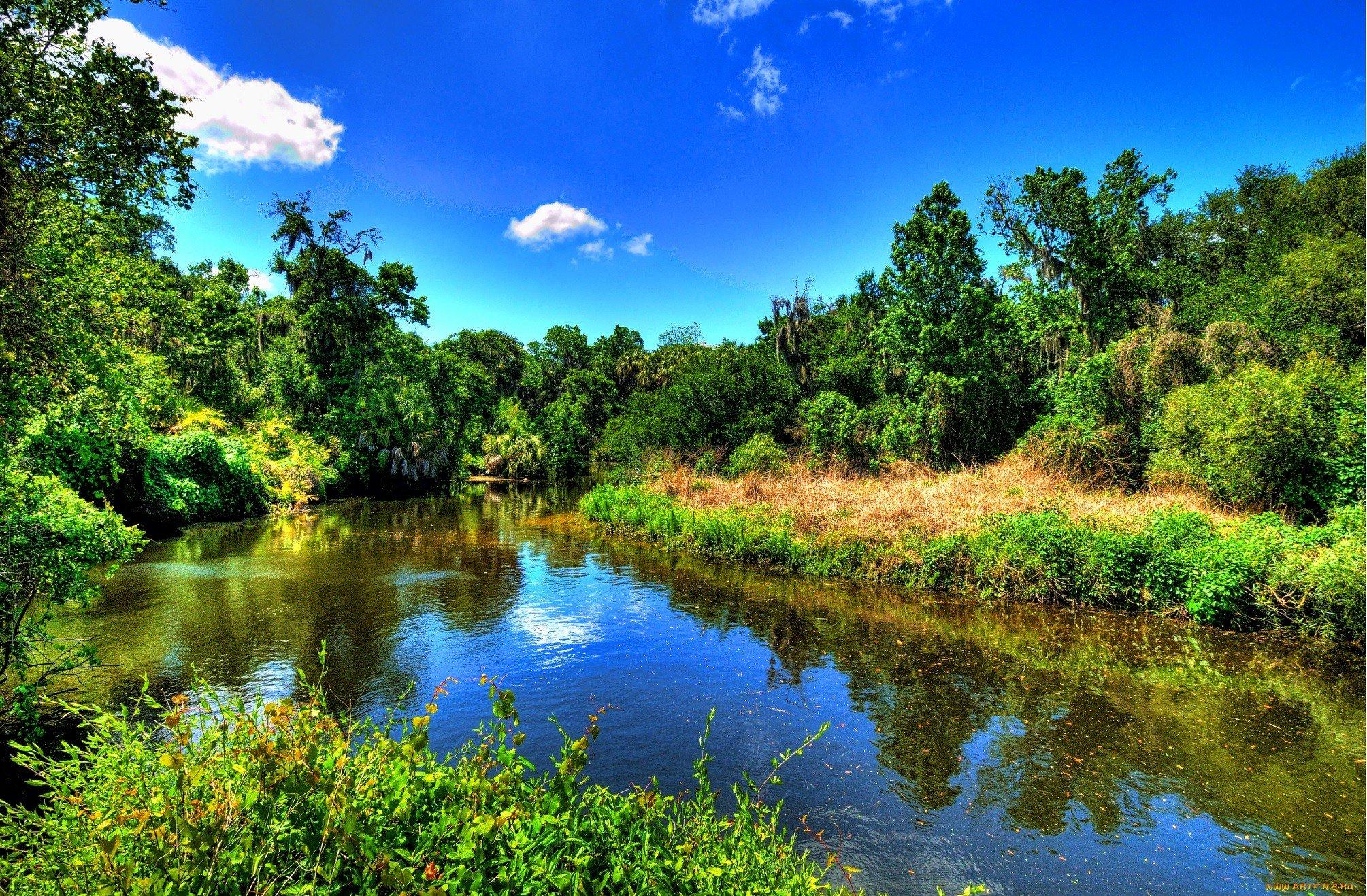 картинки речка лес лето красивенная страна, красивыми