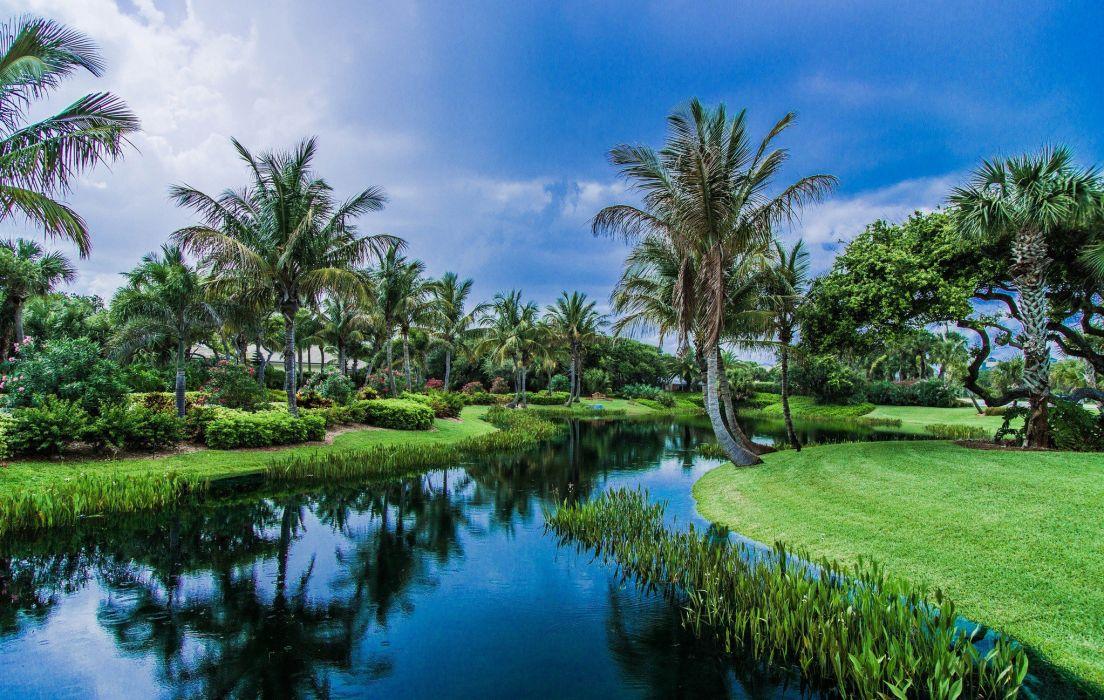 rivers paradise palms sky blue wallpaper