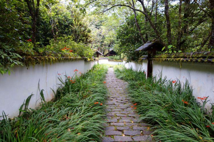 nature green road river wallpaper