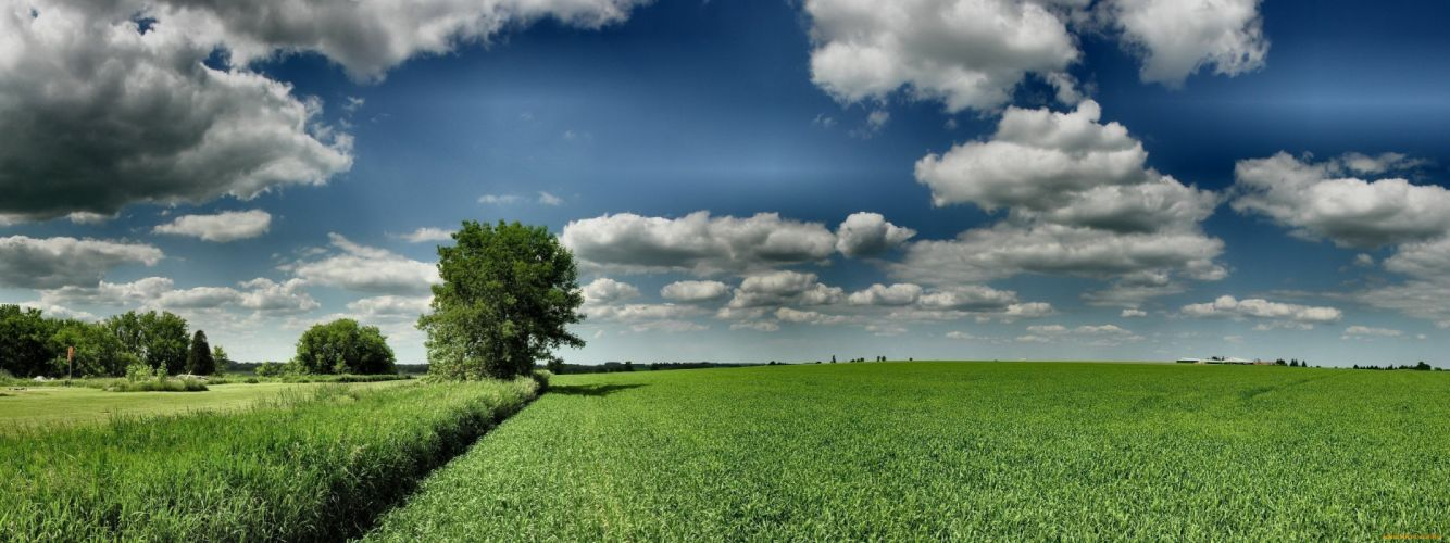 filed sky clouds blue green nature wallpaper