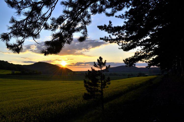 sun sunset sunrise nature wallpaper landscapes wallpaper
