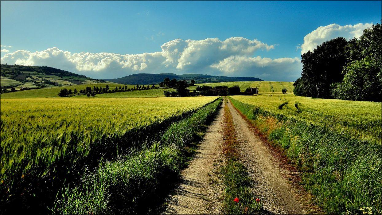 road nature sky green far wallpaper