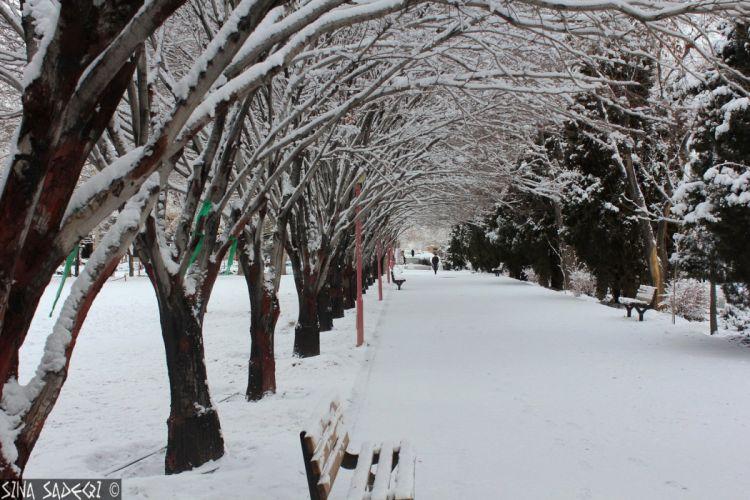 hiver neige montagne snow nature landscapes frozen winter wallpapers wallpaper