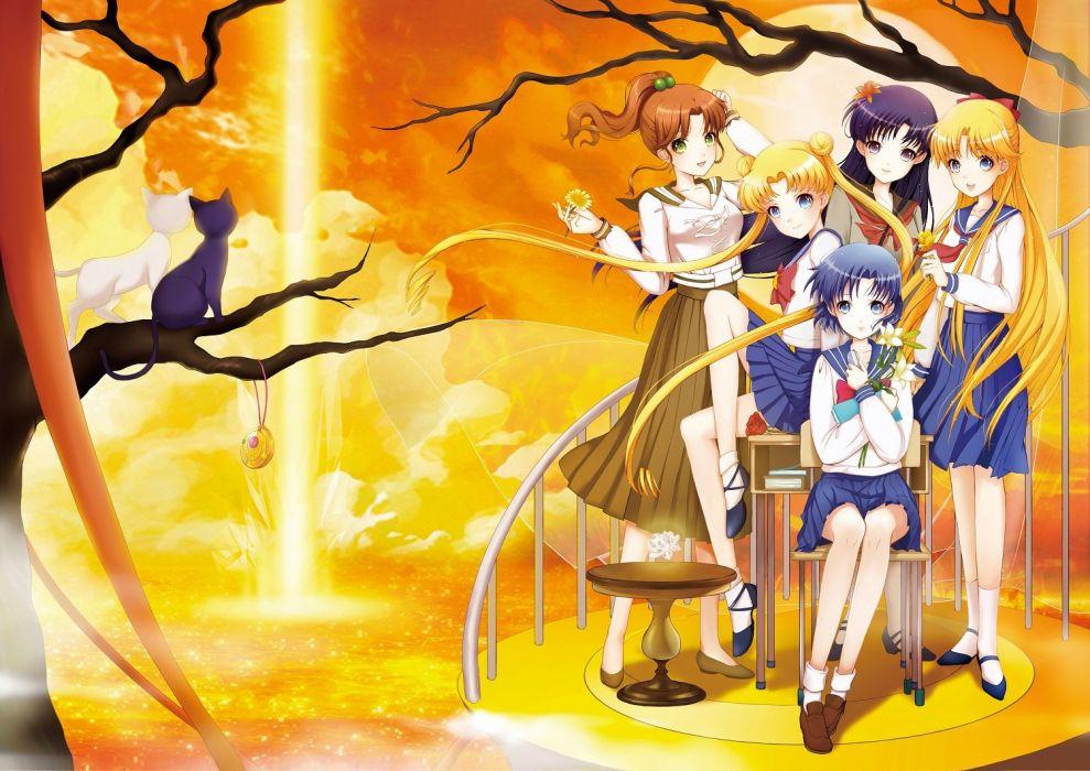 group sailor moon sunset merkur jA wallpaper