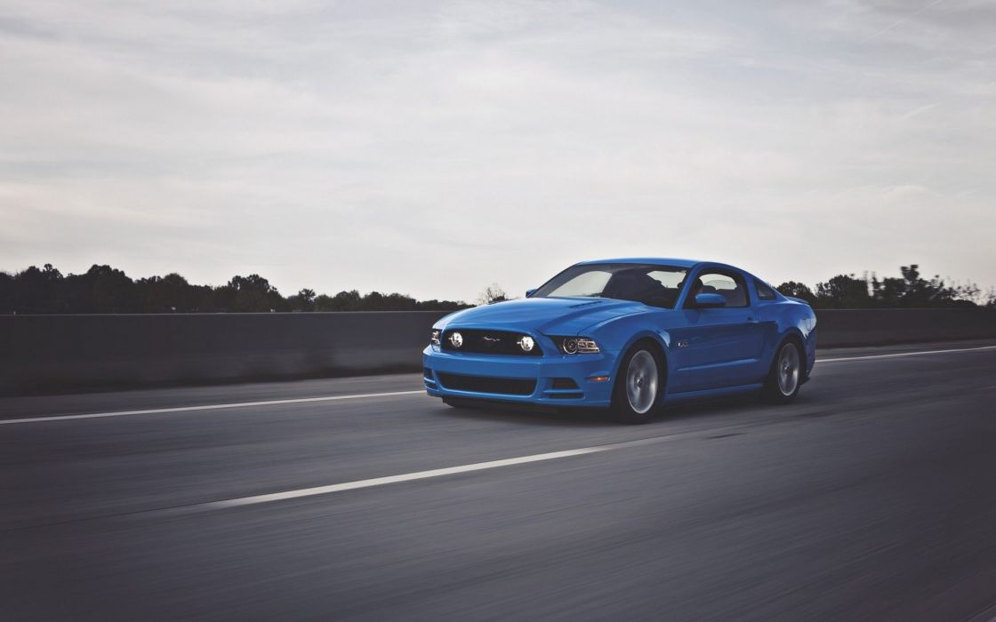 mustang gt 500 blue car run wallpaper