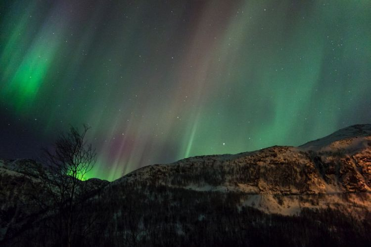 Alaska aurora aurora borealis northern lights Nature sky landscape outdoors artic boreale wallpaper