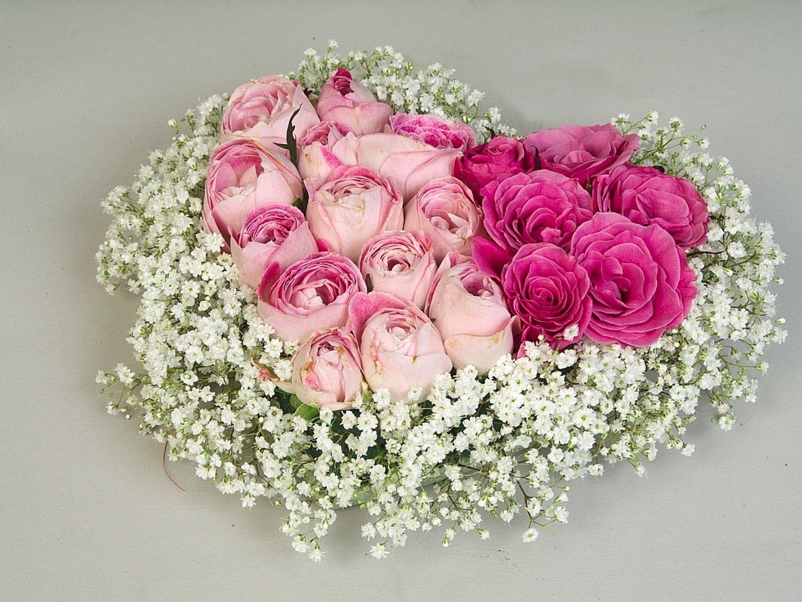 розы,желтые,букет,гипсофила,бутоны  № 761879 бесплатно