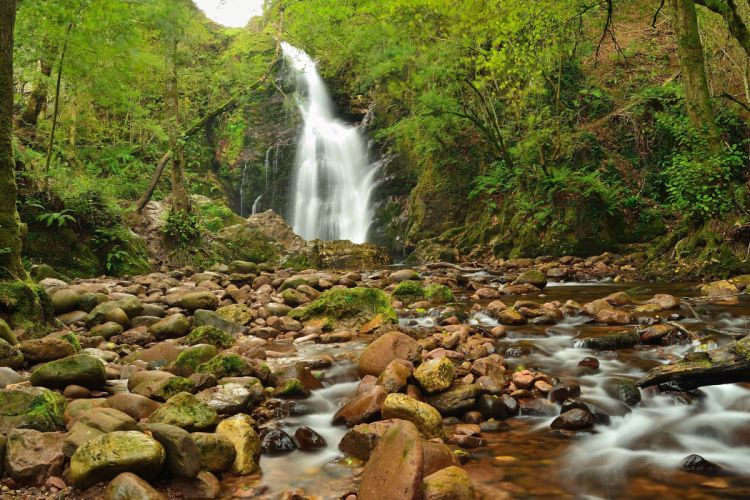 river waterfall rocks trees nature wallpaper