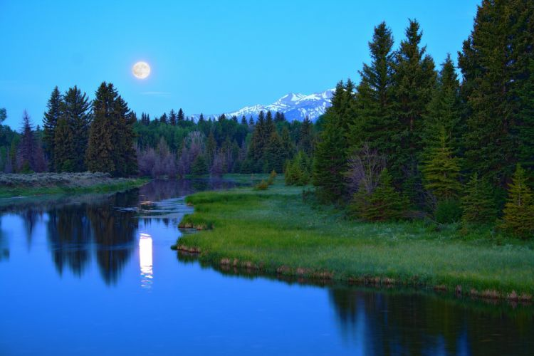 river forest trees moon mountains landscape wallpaper
