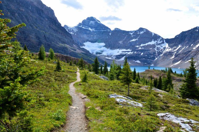 Canada Park Mountains Lake Scenery Mount Revelstoke Trail Fir Nature wallpaper
