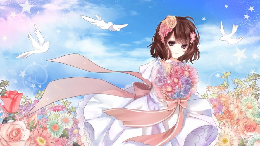 flower bride pink petals blue sky pretty wallpaper