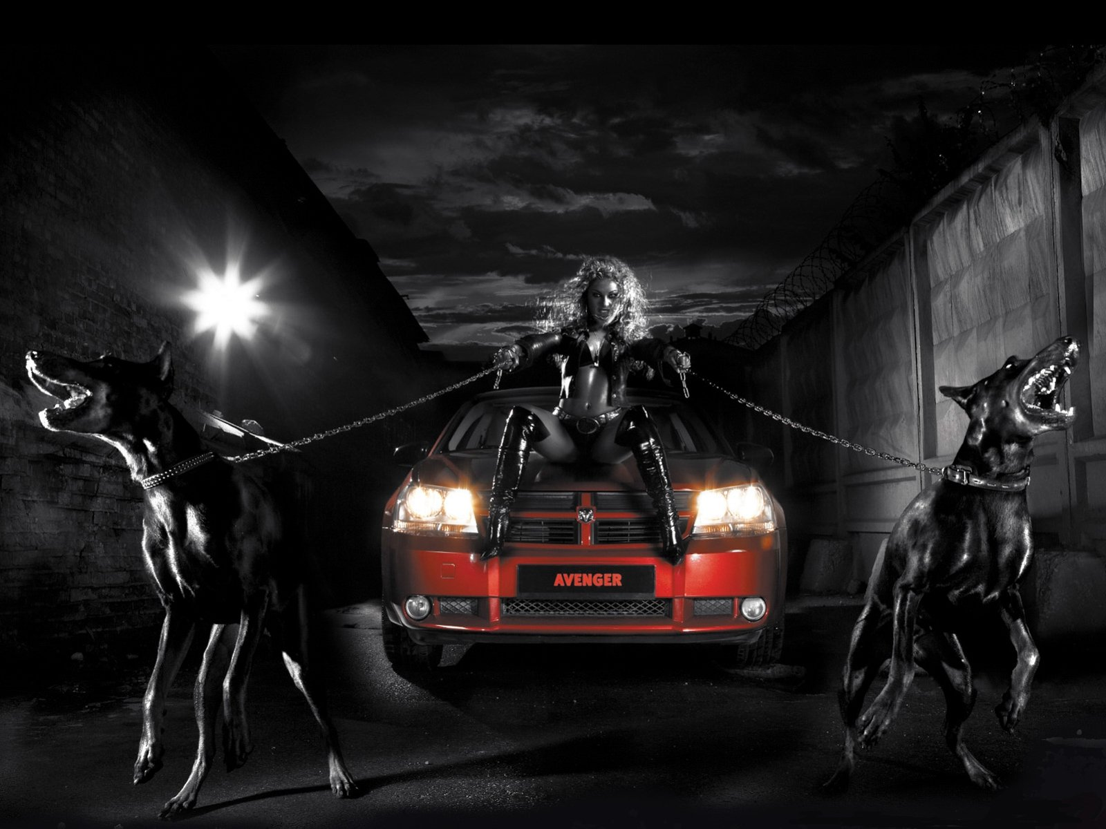 Red And Black Car Wallpapers: Dobermans Bad Girl Red Car Chain Wallpaper