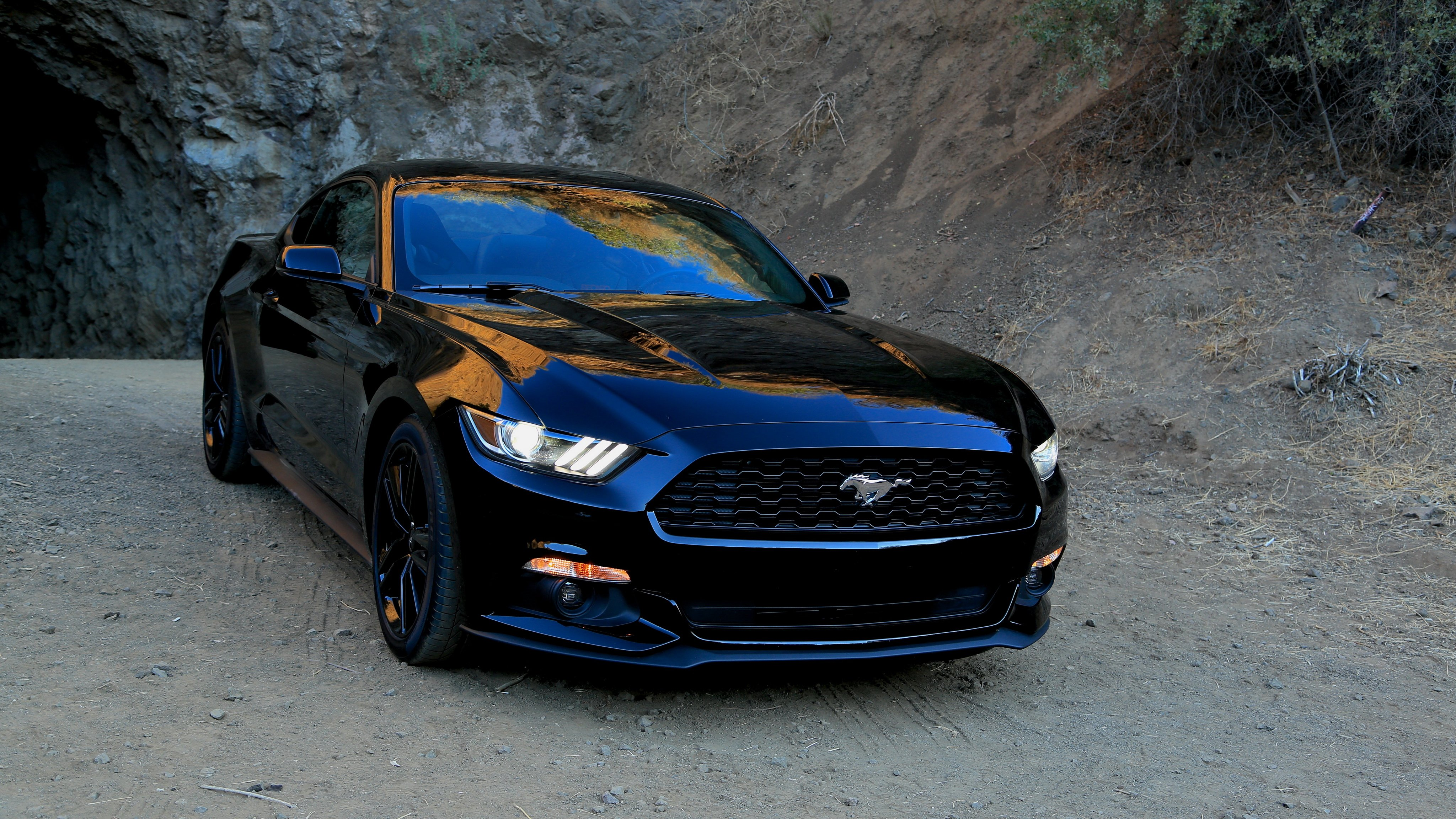 2015 ford mustang coupe muscle wallpaper 4096x2304