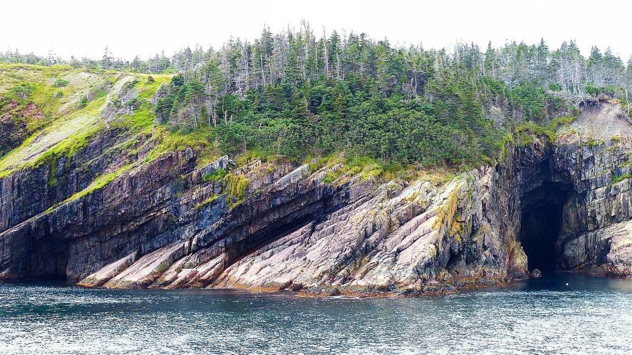 Bay Bulls Canada Newfoundland wallpaper