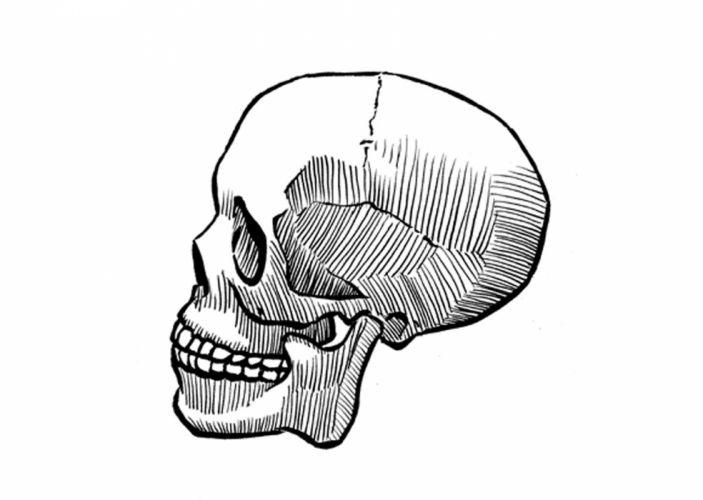 skull painting wallpaper