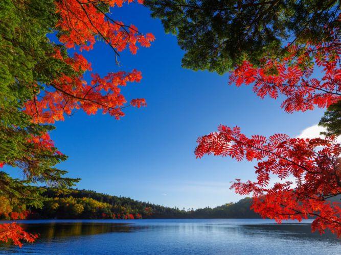 autumn fall lake wallpaper