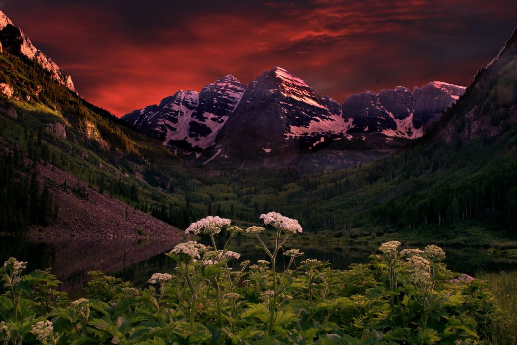 flowers clouds sunset clouds lake mountains reflection forest Maroon Bells Colorado Maroon lake wallpaper